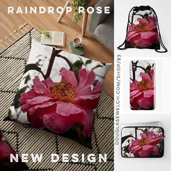 20% OFF Everything Today! – New Design! – Raindrop Rose Pillows, iPhone Cases and Much More!
