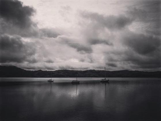 Otago Harbor, Dunedin, New Zealand via My Instagram