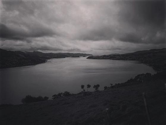 View of Otago Harbor, Dunedin, New Zealand via Instagram