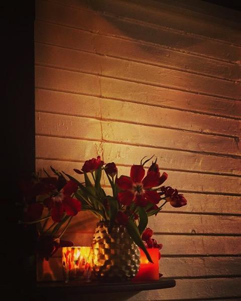 Restaurant Still Life via My Instagram