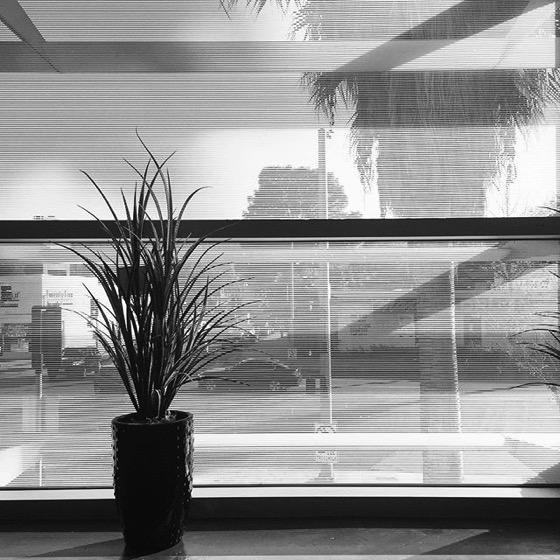 Window Scene via My Instagram