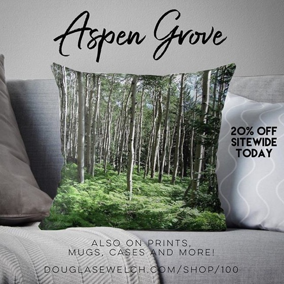 20% OFF Sitewide Today! – Bring The Forest Home with these Aspen Grove Pillows, Cases, Mugs and Much More!
