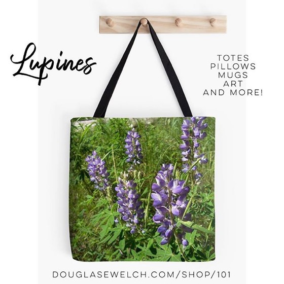 Lovely Lupines Totes, Pillows, Cases, Mugs and Much More!
