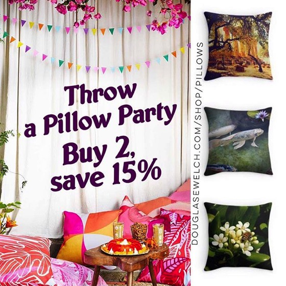 Throw A Pillow Party – Buy 2, save 15%