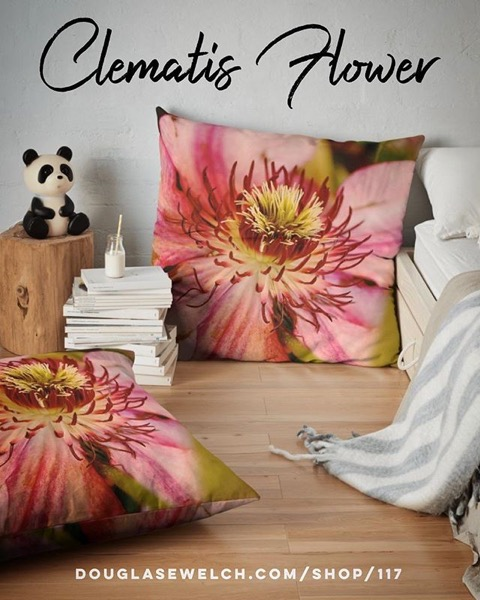 Get these Gorgeous Clematis Flower Pillows, Tees, Totes, iPhone Cases, and more!