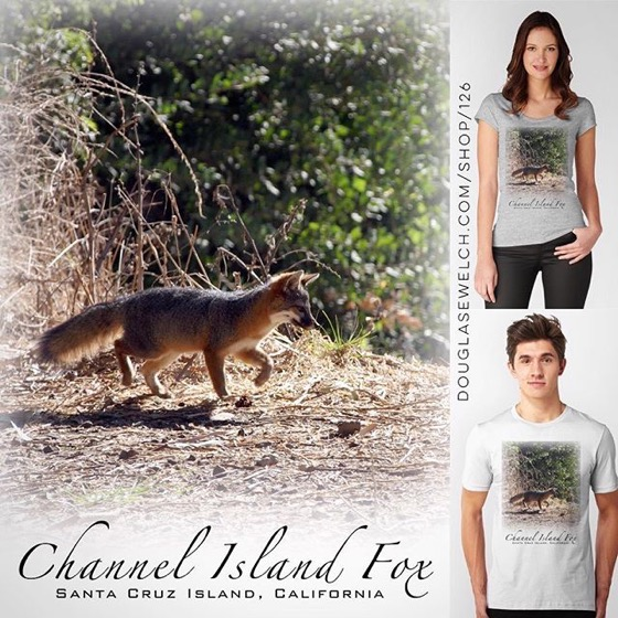 Channel Island Fox Tees, Totes, iPhone Cases, Laptop Sleeves and Much More!
