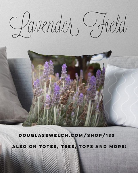 Order these Lovely Lavender Field Throw Pillows and More! Exclusively from Douglas E. Welch