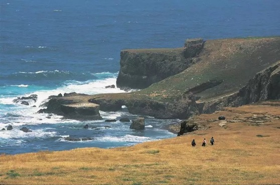 What One Tiny California Island Can Teach Us About Dealing With Climate Change via Pacific Standard