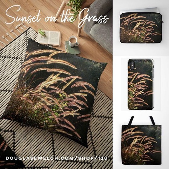 Make It Summer All Year Long with these Sunset on the Grass Pillows, Toes, iPhone Cases and More!
