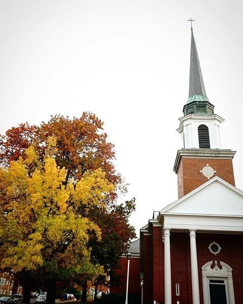 Autumn Oak Leaves 3, Columbia, Missouri via Instagram