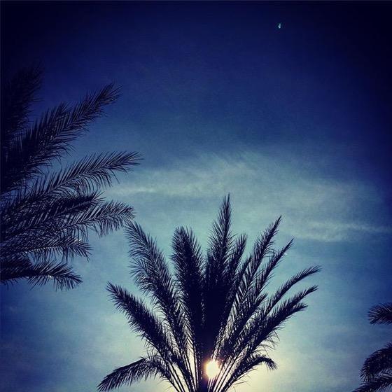 Palm Springs Thanksgiving Weekend via Instagram