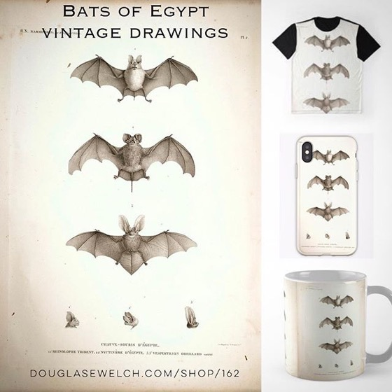 NEW PRODUCTS – Bats of Egypt Vintage Drawings Tops, iPhone Cases, Laptop Sleeves, Pillows and Much More!