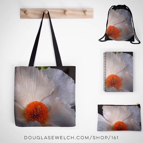 Gift These Matilija Poppy Totes, Bags, Journals and More!