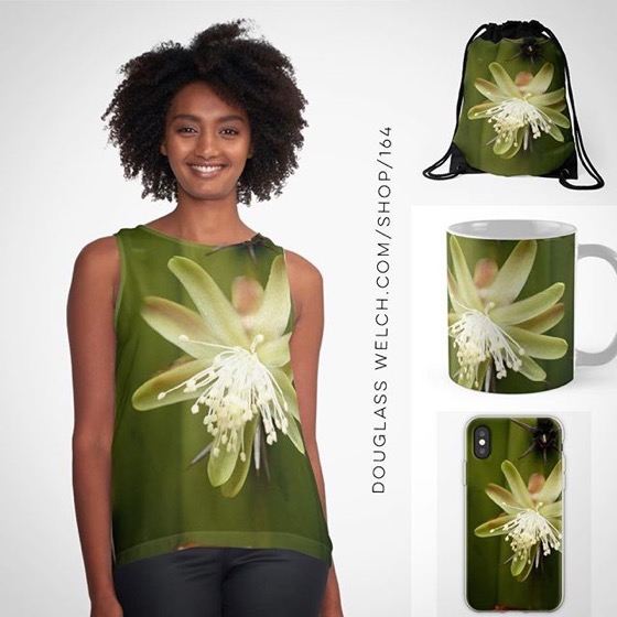 Explore The Desert with this White Cactus Flower Tops, iPhone Cases, and Much More!