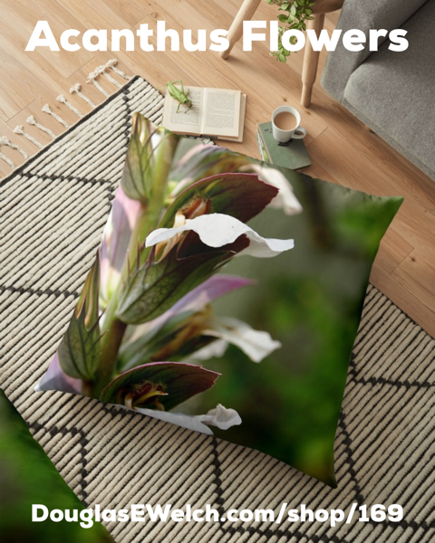 Bring The Garden Inside With These Acanthus Flowers Pillows, iPhone Cases, and Much More!