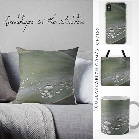 Enjoy A Rainy Day With These Raindrops in the Garden Pillows, Totes, iPhone Covers and More!
