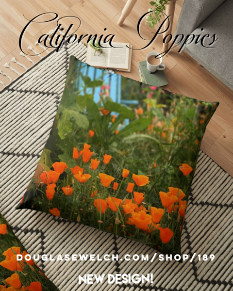 NEW DESIGN! – California Poppies In The Garden – Get These Proud Poppies Floor Pillows, Totes, Phone Cases And More! [For Sale]