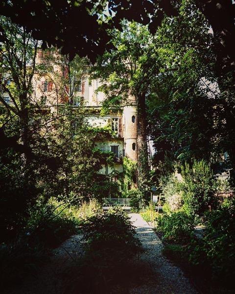Scene from the Orto Botanico in the Brera District of Milan via Instagram