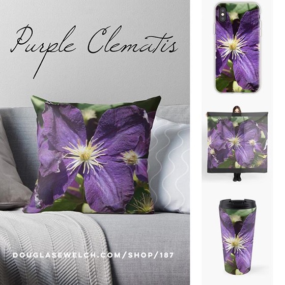 Get This Gorgeous Purple Clematis on These Throw Pillows, Tops, Mugs, iPhone Cases And More! [For Sale]