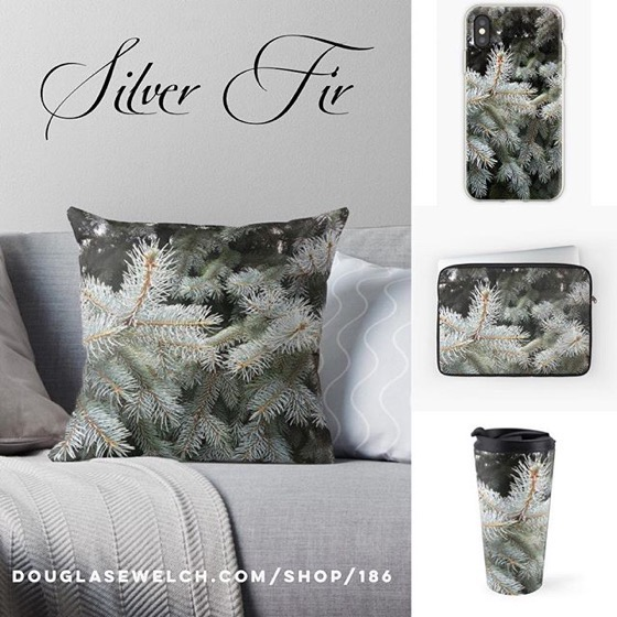 20% OFF Everything Today – No Fooling! – Visit The Mountains  with these Silver Fir Mugs, Pillows, iPhone Cases and More!