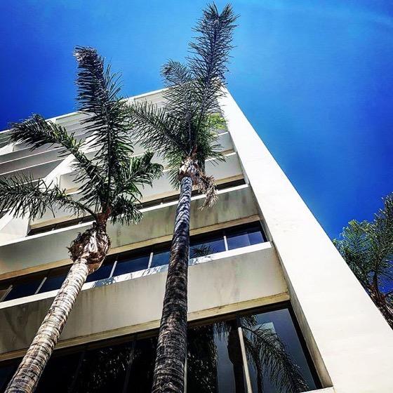 My Los Angeles 80 – Along Ventura Boulevard via Instagram