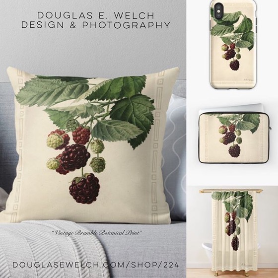 "Celebrate The Botanical Past With This ""Vintage Bramble Botanical Print"" Products and More From Douglas E. Welch Design and Photography [For Sale]"