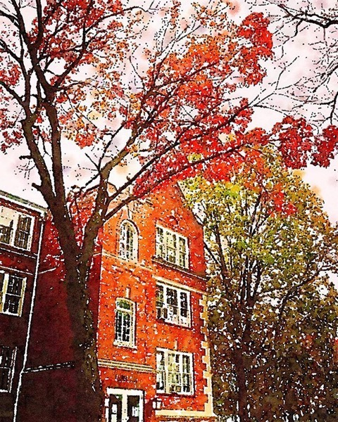 Stephens College Campus In Autumn via Instagram
