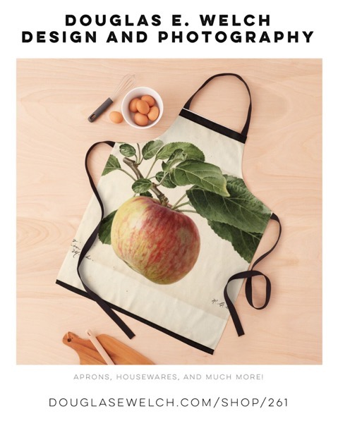 Oldenburg Apple 1919 – Vintage Botanical Print Aprons and More From Douglas E. Welch Design and Photography [For Sale]