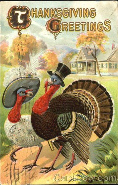 Thanksgiving 2020 – 1 in a series – Top Hat Tom Turkey and Mate