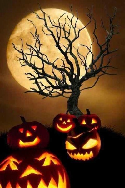 Halloween 2020 – 41 in a series – Spooky Night