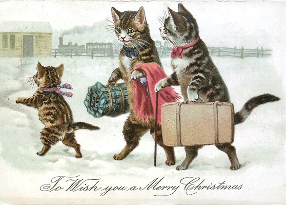 Christmas Cards for Sale 2020 – 9 in a series