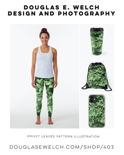 New Design: Privet Leaves Pattern Illustration [For Sale]