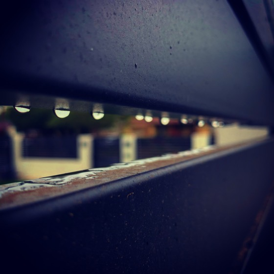 Raindrops on the fence via Instagram
