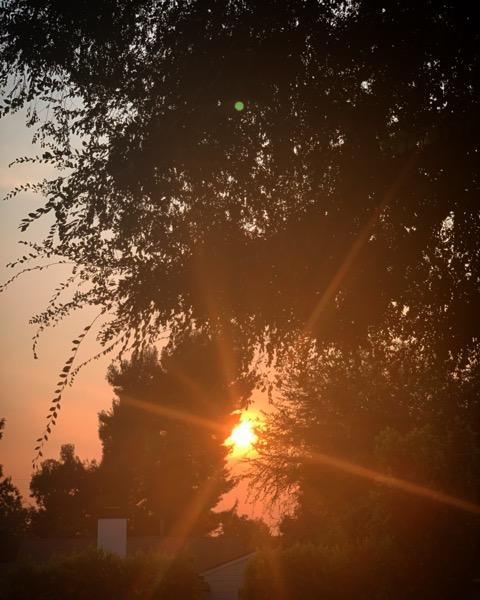 Photo: Morning Coffee Sunshine via Instagram
