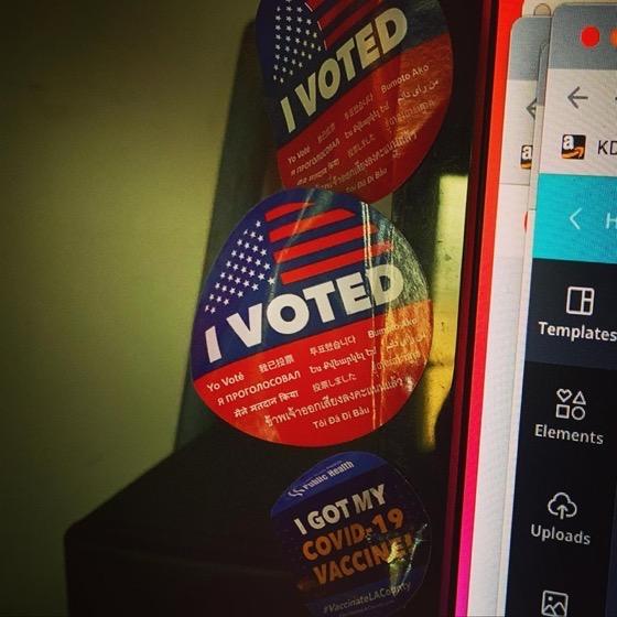 I ALWAYS VOTE!